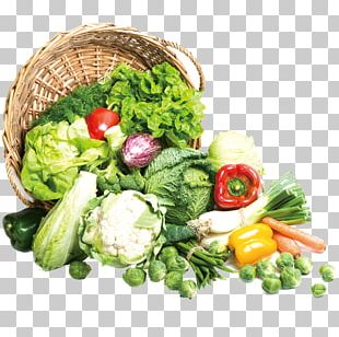 Vegetable Broccoli Food Napa Cabbage Chinese Cabbage PNG