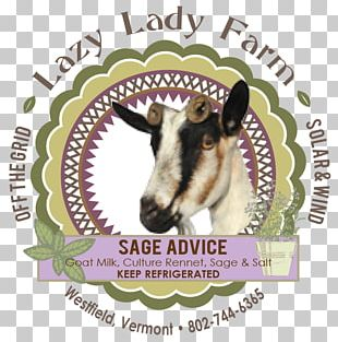 Goat Cheese Milk Sheep Cattle PNG