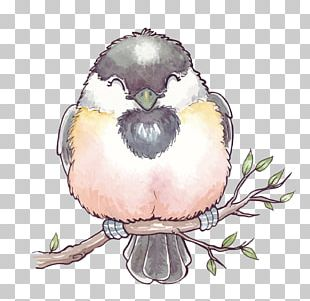 Bird Watercolor Painting PNG
