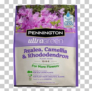 Lawn Weed Control Rhododendron Azalea Garden PNG