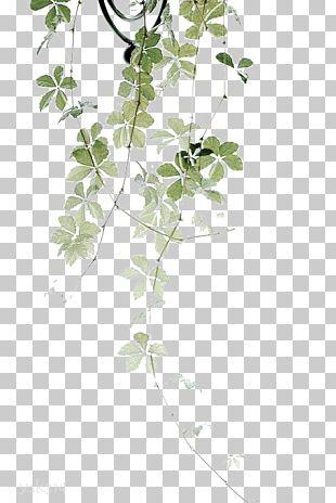 Self-love Flower Garden Plant PNG