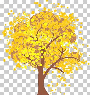 Autumn Leaf Color Tree Maple Portable Network Graphics PNG