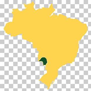 Federal University Of Rio Grande Do Norte Rio De Janeiro Porto Alegre Vegetation Campos Rupestres Montane Savanna PNG