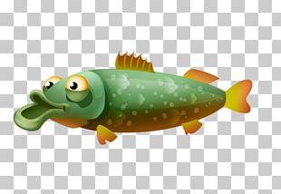 Lake Whitefish Northern Pike Fish Fillet PNG
