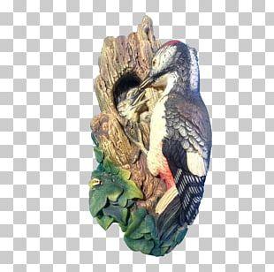 Woodpecker Chalkware Bird Woodland Park Bossons Glacier PNG