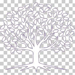 Twig Floral Design White Leaf Plant Stem PNG