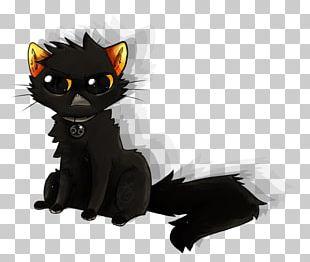 Black Cat Kitten Whiskers Drawing Digital Art PNG