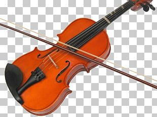 Chordophone Musical Instruments Violin Membranophone String Instruments PNG
