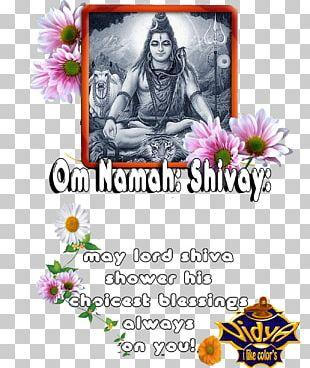 Mahadeva Om Namah Shivaya Amarnath Temple Floral Design Columbidae PNG