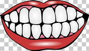 Human Tooth Mouth Smile PNG