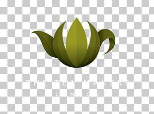 Green Tea Oolong Discounts And Allowances The Tea Makers PNG