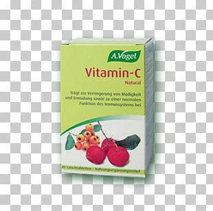Vitamin C Dietary Supplement Echinaforce Coneflower PNG