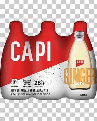 Ginger Beer Drink Brand Beverages Flavor PNG