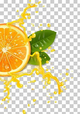 Orange Juice Cocktail Lemonade PNG