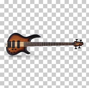 Guitar Amplifier Bass Guitar Cort Guitars Double Bass PNG