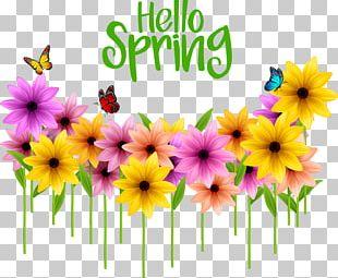 Flower Poster Spring Illustration PNG