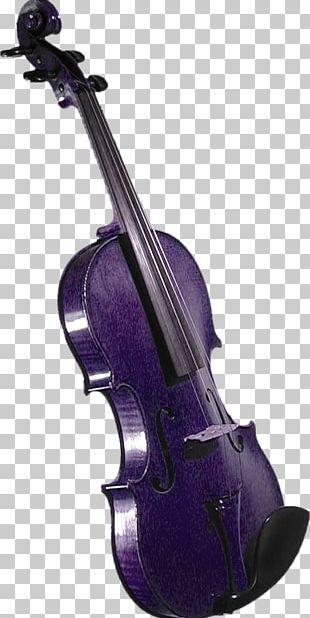 Violin Musical Instrument PNG