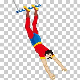 Circus Flying Trapeze PNG