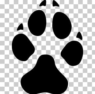 Dalmatian Dog Puppy Paw Yorkshire Terrier PNG