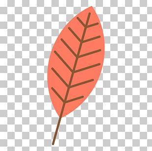 Autumn Leaf Color Autumn Leaf Color Red Portable Network Graphics PNG