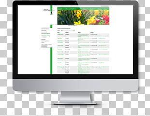 Responsive Web Design Digital Marketing Wentzinger-Gymnasium Freiburg PNG