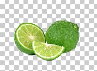 Kaffir Lime Bergamot Orange Key Lime Oil PNG