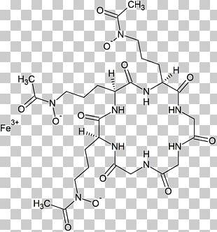 Ferrichrome Bacteria Siderophore Enterobactin Coordination Complex PNG