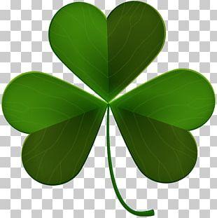 Ireland Shamrock Saint Patrick's Day PNG