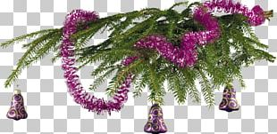 New Year Tree Holiday Christmas Ornament PNG