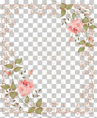 Flower Vintage Clothing Rose PNG