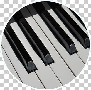 Musical Keyboard Piano Musical Instruments PNG