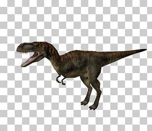 Jurassic Park: Operation Genesis Velociraptor Albertosaurus Tyrannosaurus Video Game PNG