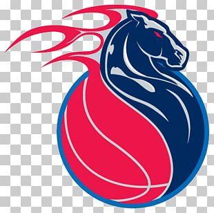 Detroit Pistons NBA T-shirt Logo Iron-on PNG
