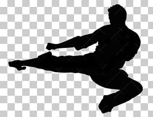 Silhouette Flying Kick Taekwondo Martial Arts PNG