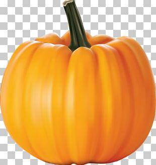 Cucurbita Pepo New Hampshire Pumpkin Festival PNG