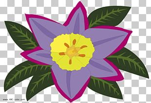 Raster Graphics Petal Flower Creative Commons License PNG