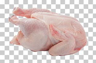 Chicken Leg Chicken Meat Broiler PNG