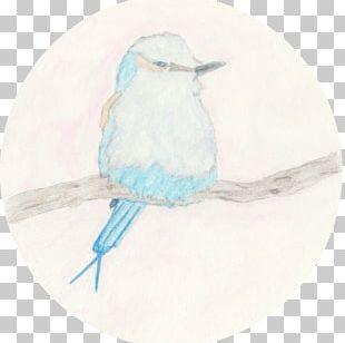 Bird Painting Drawing Beak Feather PNG