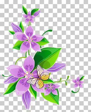 Borders And Frames Floral Design Flower PNG