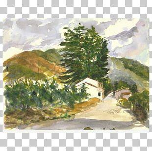 Watercolor Painting Landscape Land Lot PNG
