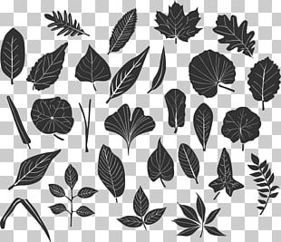 Black And White Leaf Computer Icons PNG