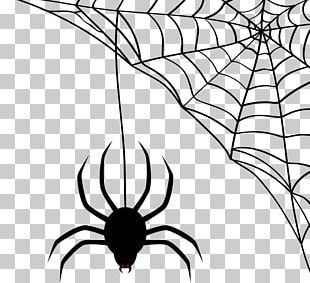 Spider-Man Spider Web Scalable Graphics PNG
