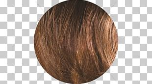 Brown Hair Wig Caramel Color Brown Hair PNG