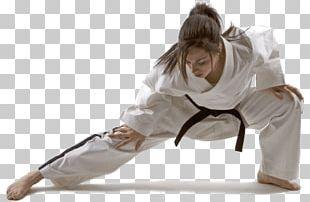 Playwell Martial Arts Taekwondo Self-defense Korean Martial Arts PNG