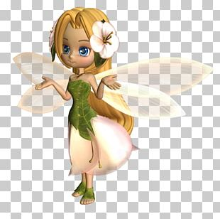 Fairy Duende Flower Fairies PNG