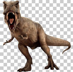 Tyrannosaurus Jurassic Park: The Game Jurassic World Evolution Dinosaur Indominus Rex PNG