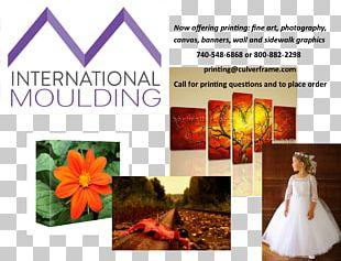 Framing Art Wood Floral Design Printing PNG