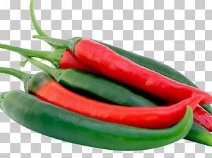 Mirchi Ka Salan Chili Pepper Bell Pepper Tabasco Pepper Vegetable PNG