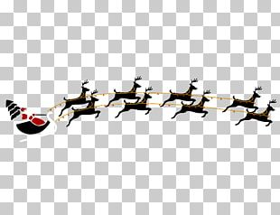 Rudolph Reindeer Santa Claus PNG