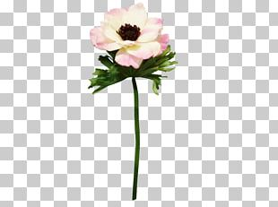 Cut Flowers Artificial Flower Flower Bouquet Plant Stem PNG